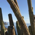 Baja California Sur Destinations