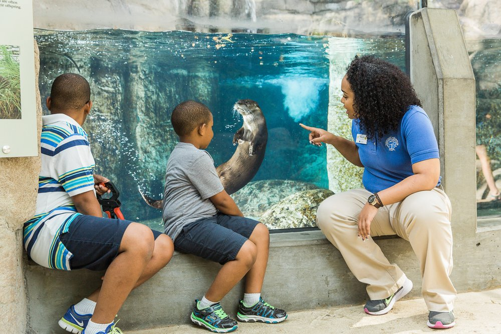 Tennessee Aquarium employee with 2 children in front of an exhibit