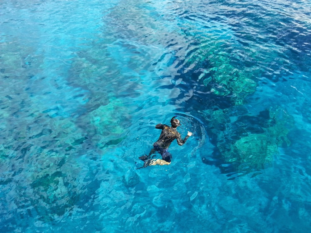 Snorkeling Spots in Los Cabos, Best beaches in Los Cabos