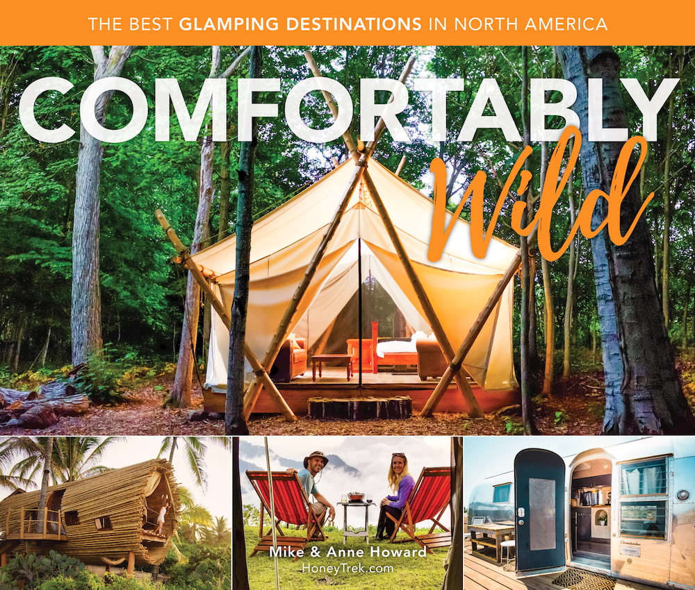 Comfortably Wild book cover