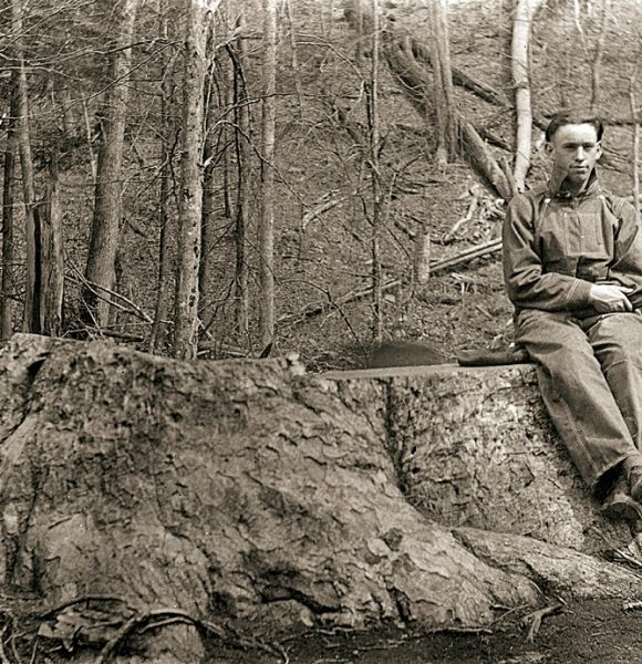The Great Smoky Mountains National Park, A Story Of Collaboration and Conservation