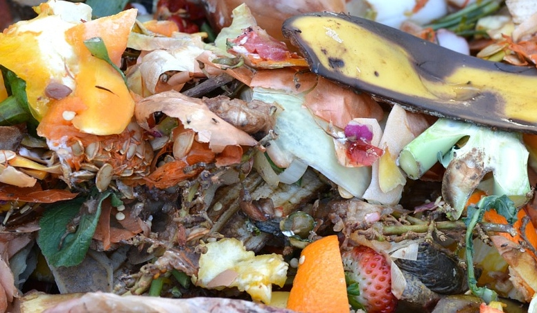 kitchen scraps for composting are great for sustainable living